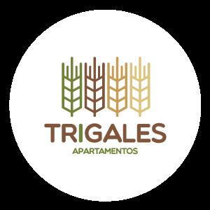 Viviendas de Interés Social, Interés Prioritario y NO VIS ejecutados en Bello por la constructora Pactar I Trigales